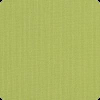 Spectrum-Kiwi
