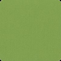 pistachio-pta